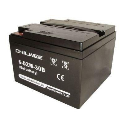 Аккумулятор тяговый CHILWEE 6-DZM-30B купить в Волгограде